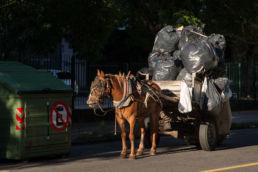 Die Müllabfuhr in Montevideo