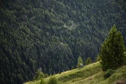 Tiroler TrageTage