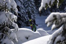Snowboardtouren Kleinwalsertal - verschneiter Wald