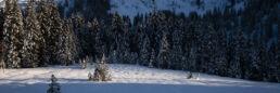 Snowboardtouren Kleinwalsertal - das letzte Licht