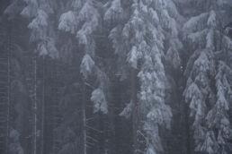 Snowboardtouren Allgäu - Winterkulisse