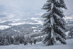 Snowboardtouren Allgäu - Powder fahren mit Panorama